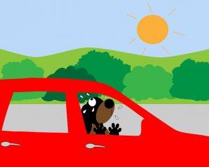 Zu heiß im Auto? Ein Auto Kühlschrank hilft